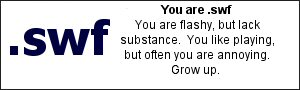 You are .swf. You are flashy, but lack substance. You like playing, but often you are annoying. Grow up.